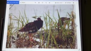 Żywa lekcja przyrody XI 2019 16