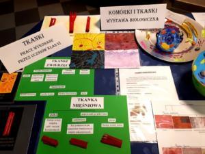 Komórki i tkanki - wystawa biologiczna XI 2019 05