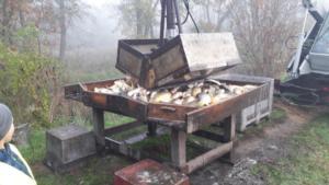 Lekcja otwarta  praca w rybołówstwie. Odłowy ryb X 2019  03