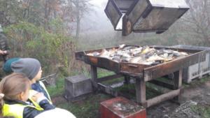 Lekcja otwarta  praca w rybołówstwie. Odłowy ryb X 2019  04